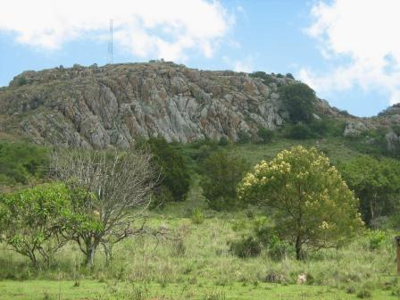 Close Up View of Sergoit Hill. Image Courtesy of William Kiptoo