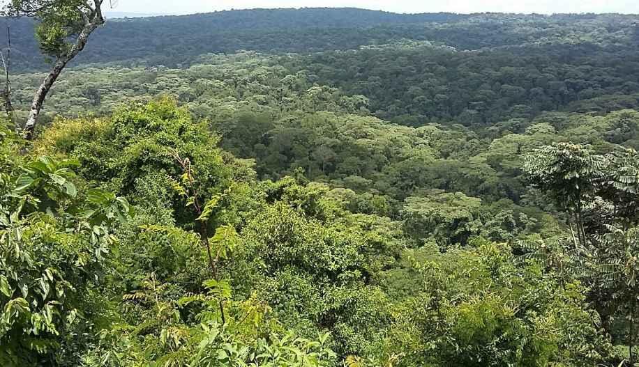 Viewpoint at Cheruiyot Ecosystem. Image Courtesy of Tito Cheruiyot