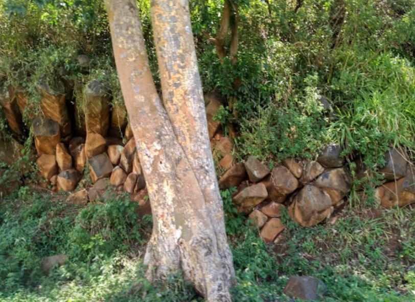 Section of the Kopere Rocks. Image Courtesy of Joseph Langat