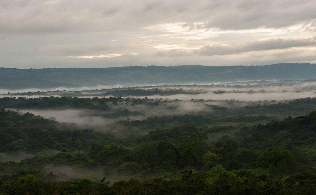 Nandi Scarp from Kakamega Forest. Image Courtesy of Treasures of Kenya