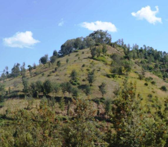 A Section of Kiathandi Hill. Image Courtesy of Meru Tourism